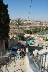 Pilgrimage party walking the narrow path down the mount of olives towards Jerusalem