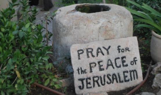 A Week of Contrasts in Jerusalem