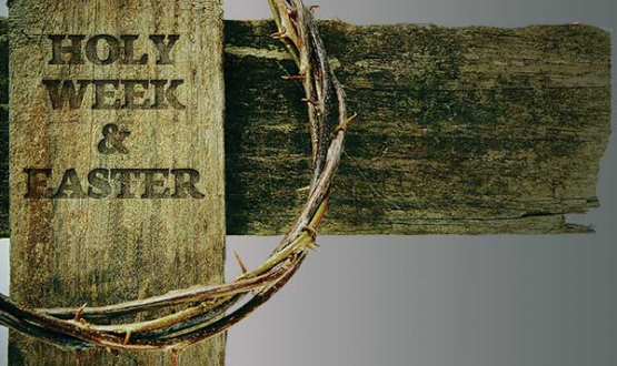 Follow Archbishop Michael Lewis through Holy Week