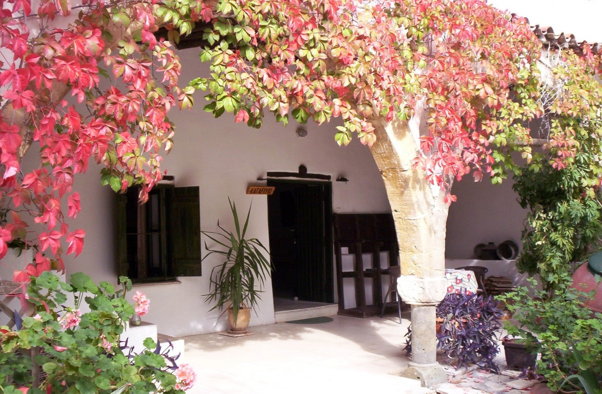 Vibrant autumnal colours at the entrance to the guest house